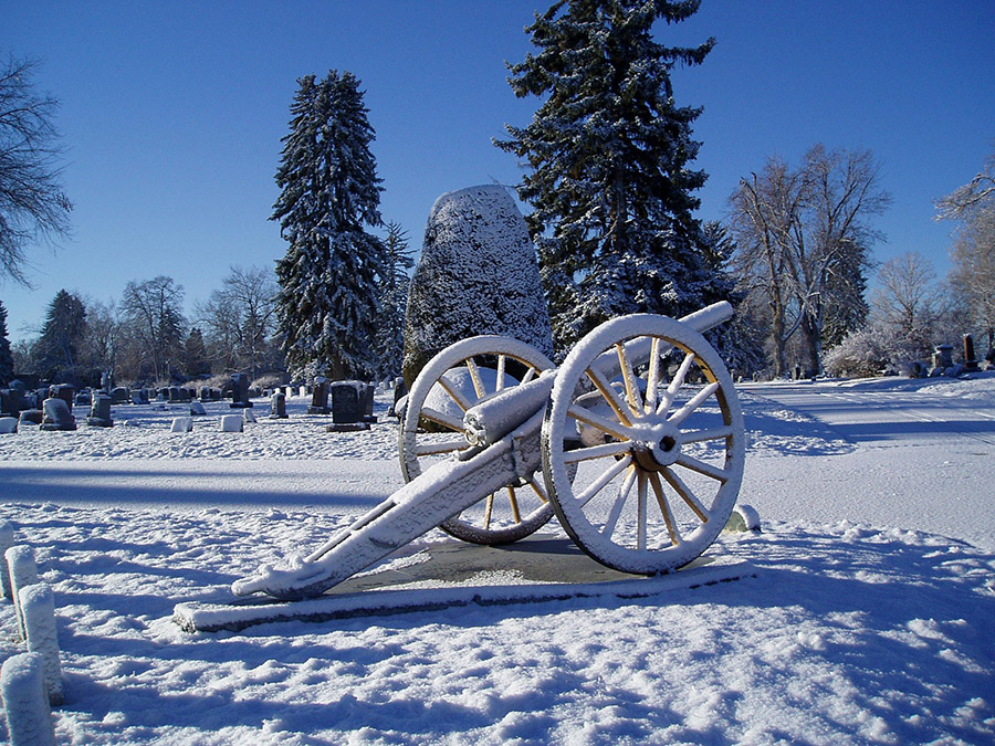 Cannon Winter
